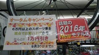 2015-09-04 17.06.15.jpg
